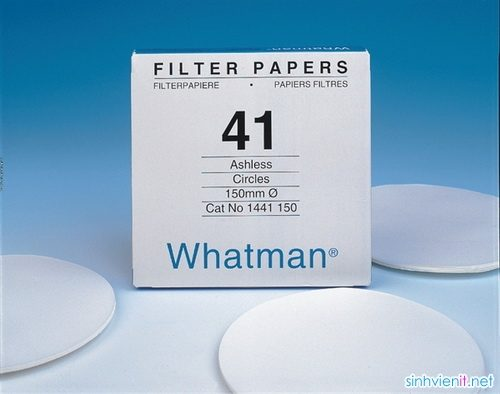 giấy lọc whatman