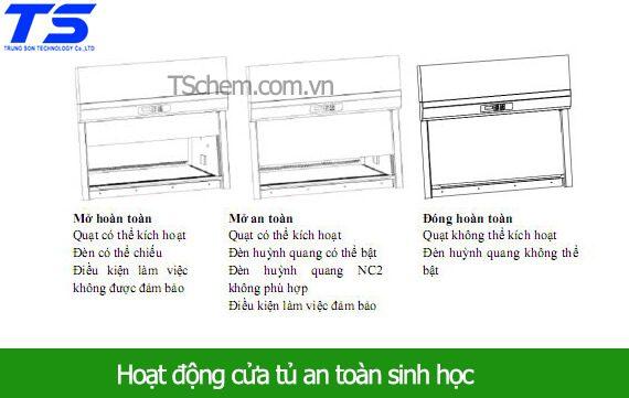 hoat-dong-dong-mo-cua-tu-an-toan-sinh-hoc