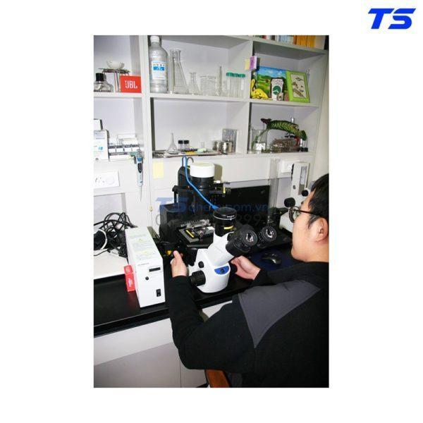 mua-kinh-hien-vi-CKX53-olympus-o-tphcm