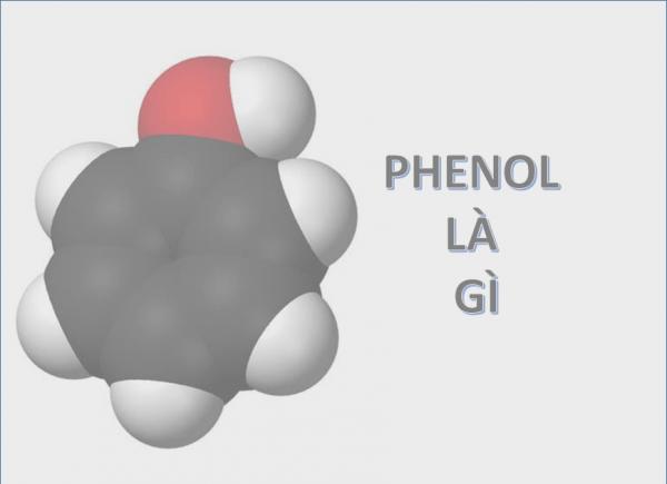 Phenol là gì? Tính chất, điều chế, công dụng và lưu ý khi sử dụng hóa chất này